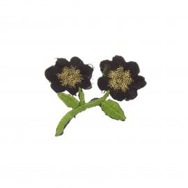 Thermocollant brodé Douceur botanique - noir/doré