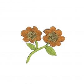 Thermocollant brodé Douceur botanique - noisette/doré