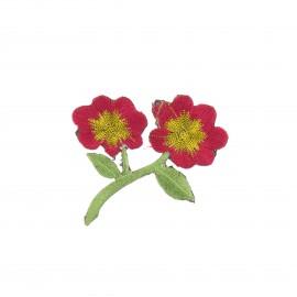 Thermocollant brodé Douceur botanique - rouge/doré