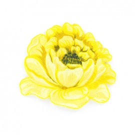 Thermocollant brodé Pivoine - jaune