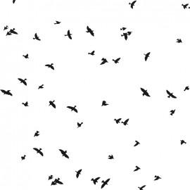 Tissu Jersey Birdy - blanc x 10 cm