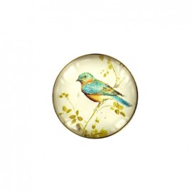 Paris postcard  cabochon button - bird