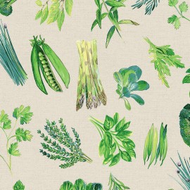 Coated cotton fabric Endive - naturel x 50cm