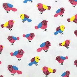 Tissu Jersey Qjutie Kids Sparkle - birds x 10cm