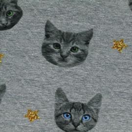 Tissu Jersey Cats - gris x 18cm