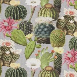 Tissu toile coton impression digitale - Cactus mix x 35cm