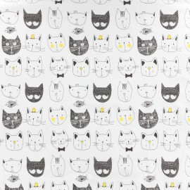 Jersey fabric Funny Cats - blanc x 10cm
