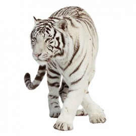 Jolie faune large iron-on patch - white tiger