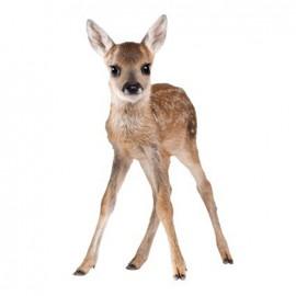 Thermocollant grand format Joli fauve - bambi debout