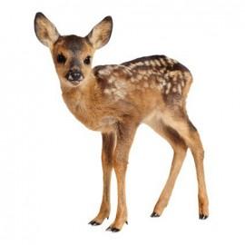 Thermocollant grand format Joli fauve - bambi de profil
