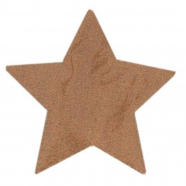 Iron-on patch Star FrouFrou - Sparkling Copper Pink