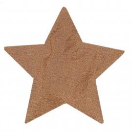 Thermocollant étoile tout ce qui brille FrouFrou - Rose cuivre scintillant