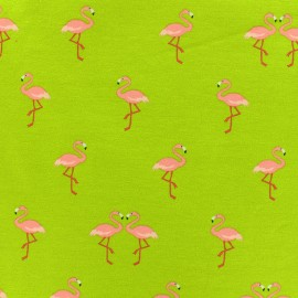 Jersey fabric Sweet flamingo - anise x 10cm