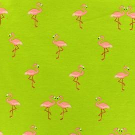 Tissu Jersey Sweet flamingo - anis x 10cm