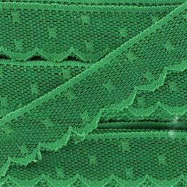 Ribbon Scalloped Lace Point d'esprit - green x 1m