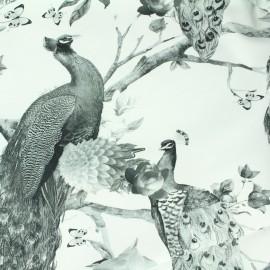 Tissu Jersey La beauté des paons - blanc x 35 cm