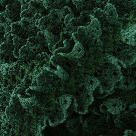 Dentelle froufrou sur ruban satin - vert foncé x 1m