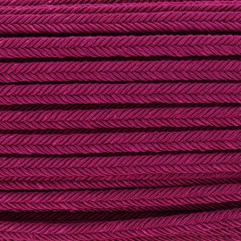 Braid ribbon Amaya - violine x 1m