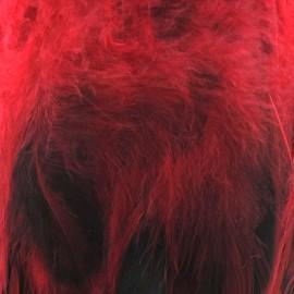 Galon Plume effet nacré 10cm - rouge x 50cm
