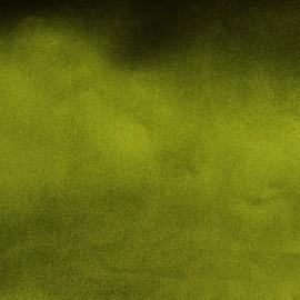 Tissu velours Brunei - vert olive x 10cm