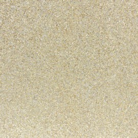 Tissu pailleté Fiesta 69cm - or clair x 10cm