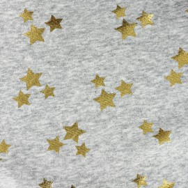 Tissu  sweat envers minkee Christmas Star - gris/or x 10cm