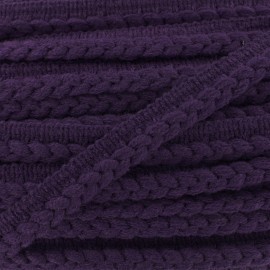 Ribbon protruding braided wool - purple x 1m