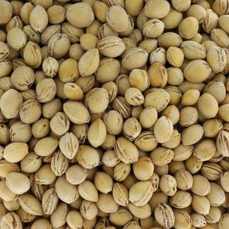 Noyaux de cerises pour rembourrage - 1kg