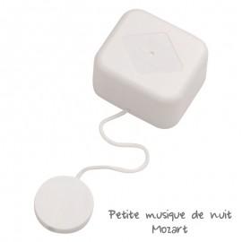 """Boîte à musique - Mécanisme à ressort """"Petite Musique de Nuit"""" - Mozart"""