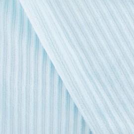 Tissu velours minkee à côtes ciel x10cm
