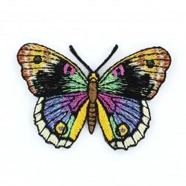 Thermocollant Papillon A Noir