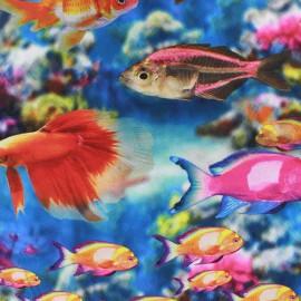 Tissu popeline à impression digitale Fish tank x 10cm