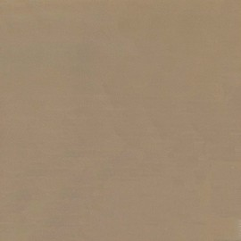 Faux leather/suede - taupe/beige x 10cm