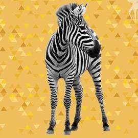 Cotton fabric panel - Zebra 70 cm x 140 cm