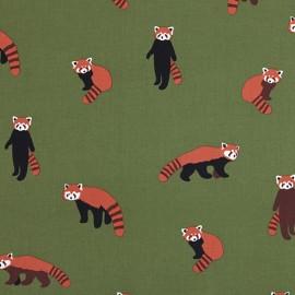 Tissu toile coton Daily Like - Lesser Panda x 10cm